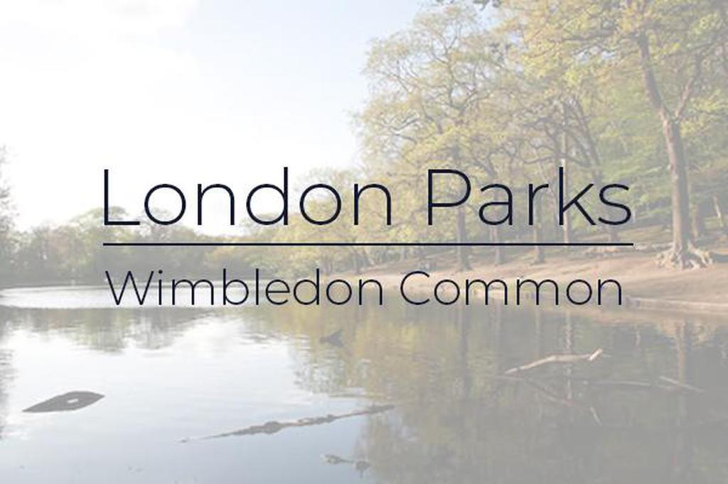 London Parks - Wimbledon Common gallery photo