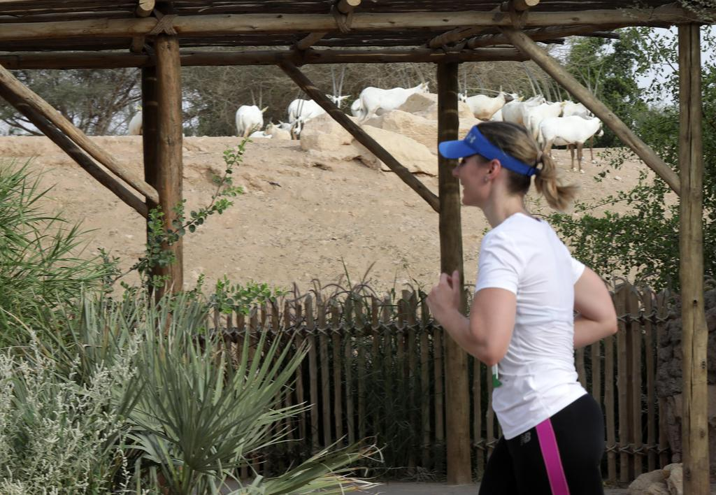 Al Ain Zoo Run gallery photo