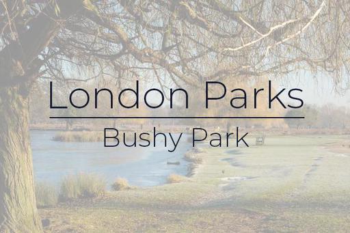 London Parks - Bushy Park gallery image