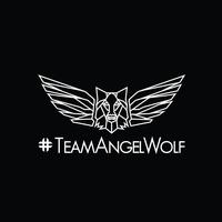 Team AngelWolf logo