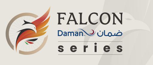 Falcon Daman logo